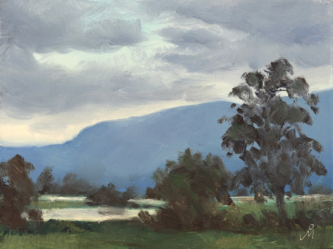 Landscape painting of a lake sorrounded by tall trees and a distant mountain, just after a spell of rain during monsoon season.