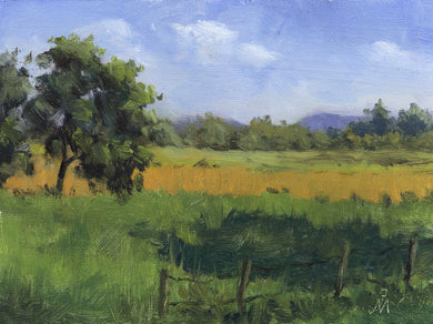 A sunny landscape painting of a paddy field near Anmod in Karnataka.