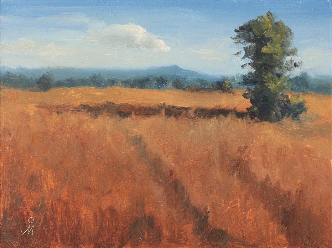 Landscape painting of a lone tree casting long shadow, on a dry grassy field, in the morning sun. A blue mountain and a clear sky is seen in the background.