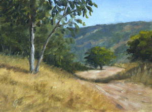 A sunny landscape painting of a hill trail famous with morning walkers.