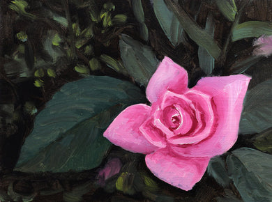 Oil painting of a rose bud blooming at my ancestral home in Goa.