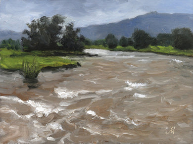 Landscape painting of a river swollen with rain water, trees on it's banks and distant mountain.