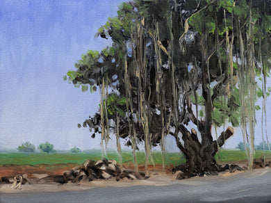 Landscape painting of a large banyan tree on the edge of a farm and a road.