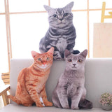 HitHopKing 3D cat shape pillow ,Creative 3D Simulation Cat pillow,Baby Stuffed Toy Soft ,Soft Cat Pillows ,Stuffed Animals Cushion Sofa Chair Decor Birthday Gift (gray)