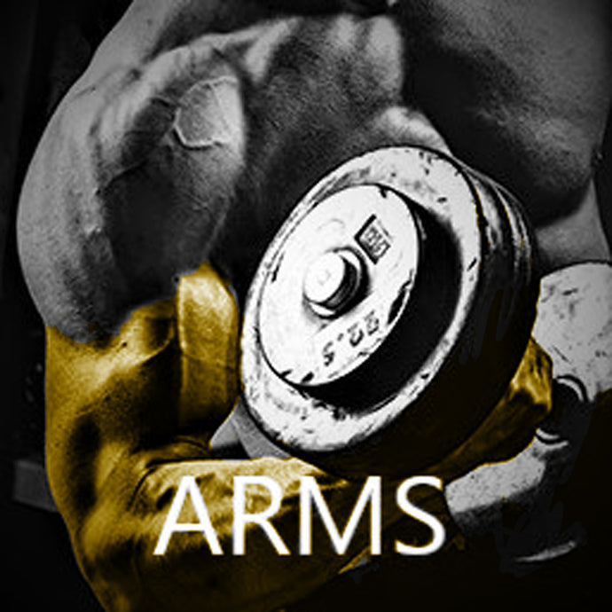 High Intensity Arms Workout - FREE DOWNLOAD