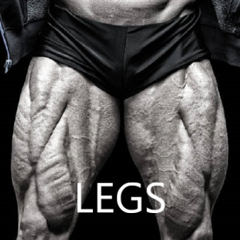 Beginners Legs workout