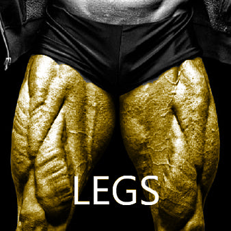 High Intensity Legs Workout