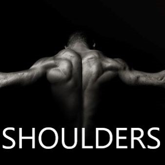Beginners Shoulder workout