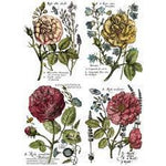 Iron Orchid Designs Transfers