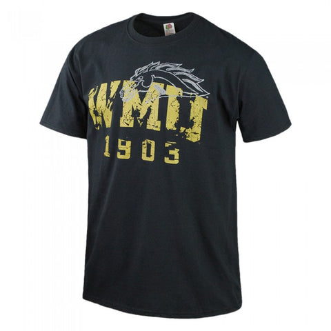 Distressed Logo WMU DLS T-Shirt