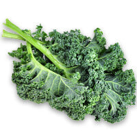 8 X More Magnesium than Kale - Leaf Moringa Products