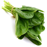 3 X More Iron than Spinach - Leaf Moringa Products