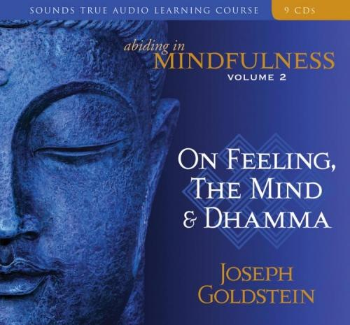 Abiding in Mindfulness Volume 2 - CE Credits