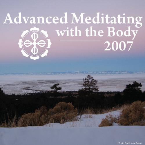 Advanced Meditating with the Body 2007