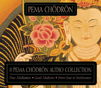 The Pema Chdrn Audio Collection