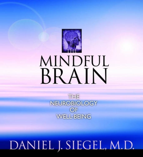 The Mindful Brain