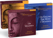 Abiding in Mindfulness Collection