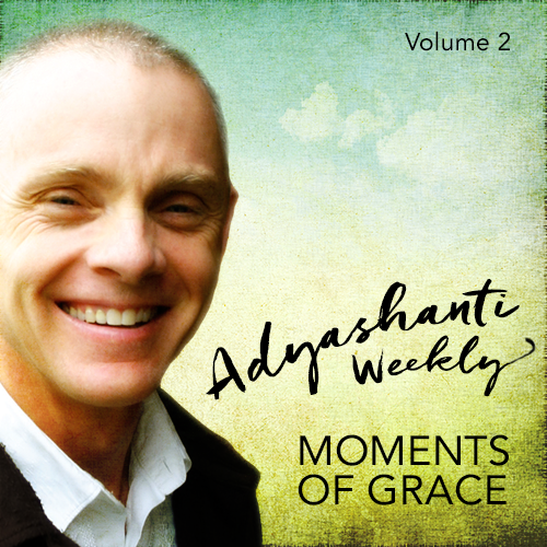Adyashanti Weekly: Vol 2 (2016)