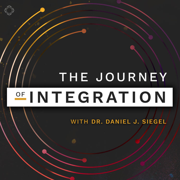 The Journey of Integration