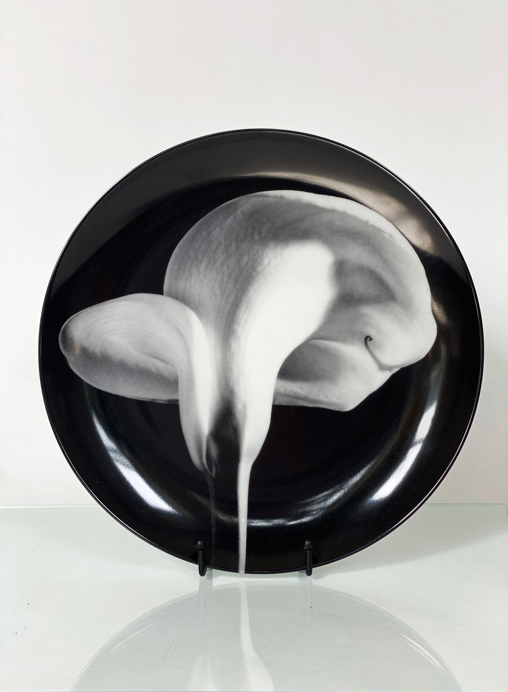 'Calla Lily' by Robert Mapplethorpe