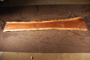 Walnut Slab #10504