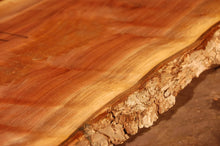 Load image into Gallery viewer, Walnut Slab #10902