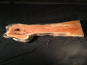 Honey Locust Slab #11899