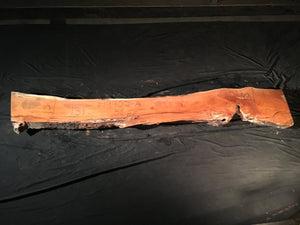 Honey Locust Slab #19902 - A