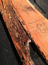Load image into Gallery viewer, Honey Locust Slab #19903-A