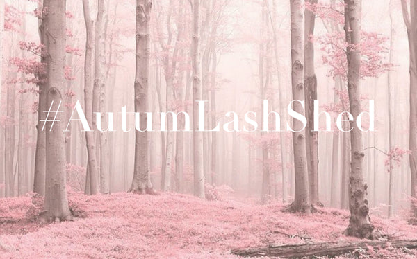 AUTUMN LASH SHEDDING SEASON