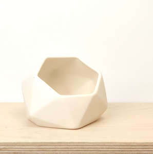 Hexagon Wall Mounted Planter - White