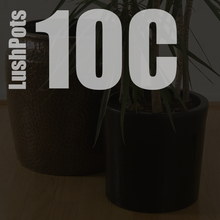 Load image into Gallery viewer, 10 Inch Cylindrical | 10c