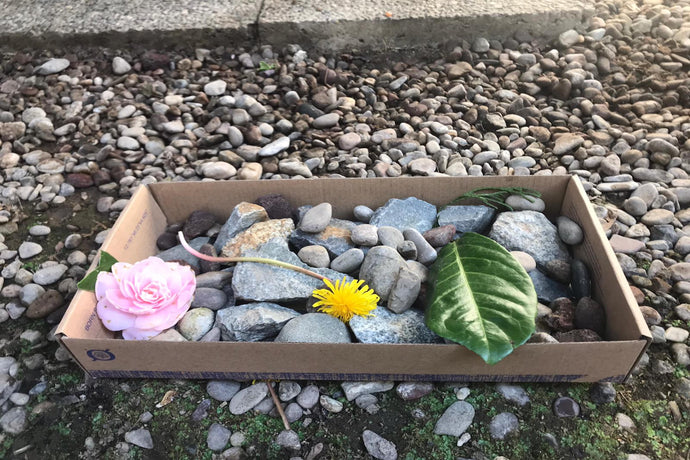 EASY WORLD CRAFTS: DIY ZEN ROCK GARDEN