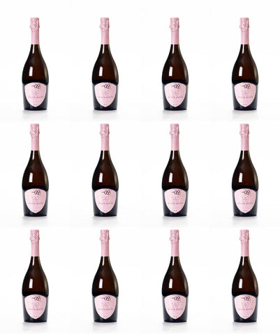 Italian sparkling wine - Hello Kitty Rose' Champagne