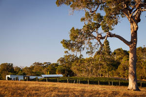 Gralyn Estate Margaret River Organic Vineyard Cabernet Sauvignon