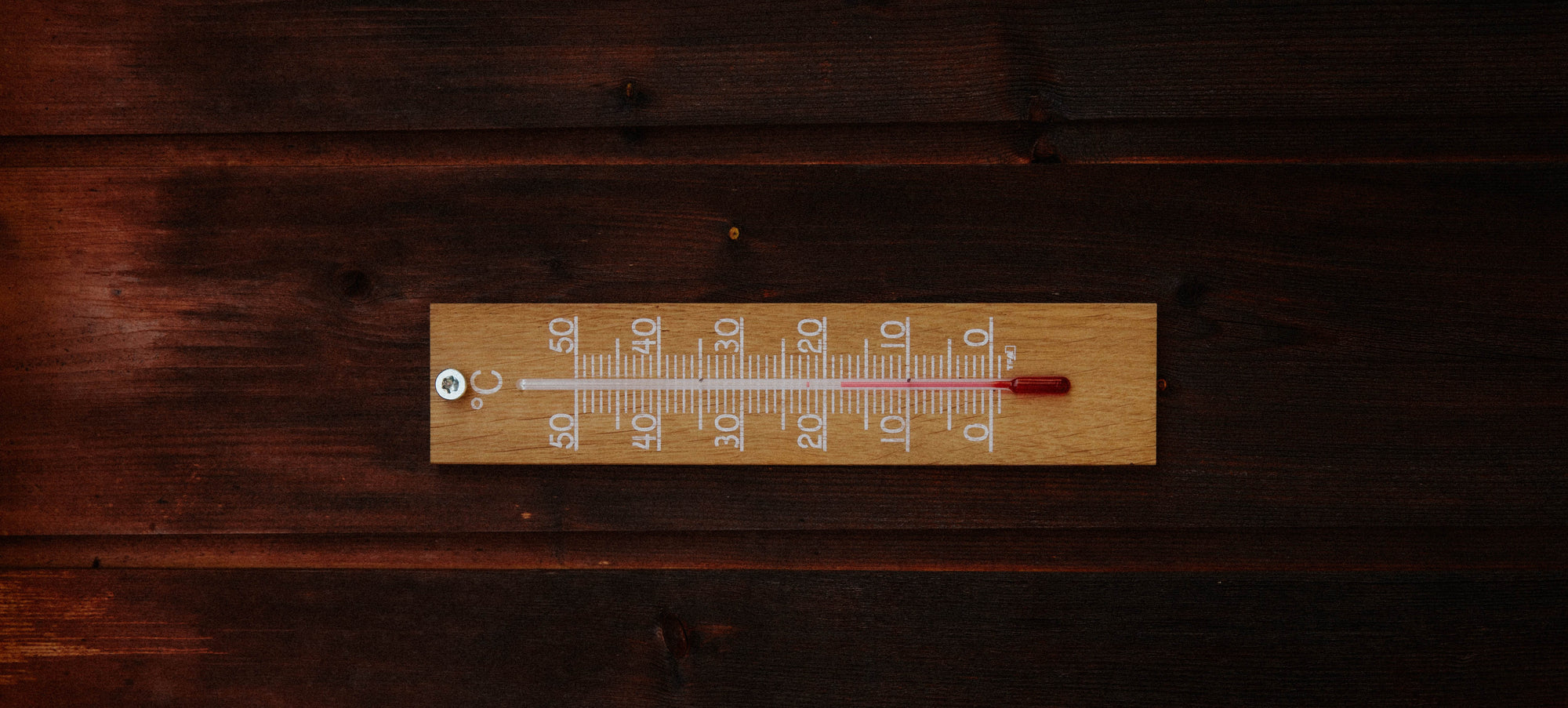 Make a Thermometer