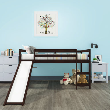 Ryan Loft Bed with Slide.