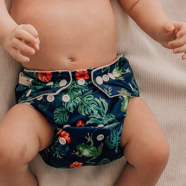 Tropical Frogs Modern Cloth Nappy
