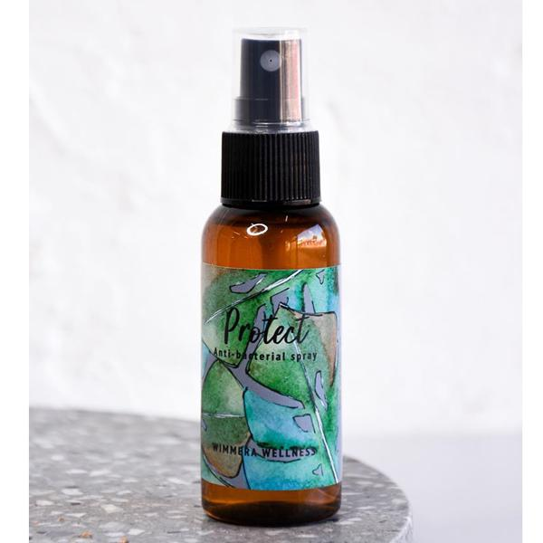 Protect Anti Bacterial Spray (100ml)