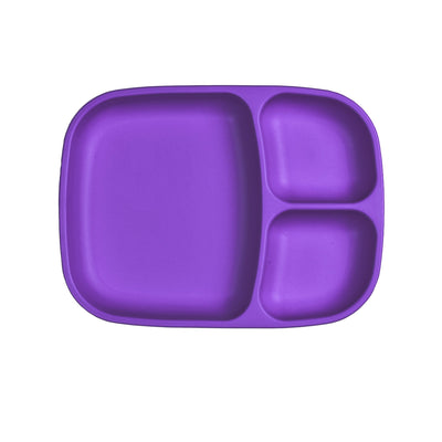 Divided Tray (Amethyst)