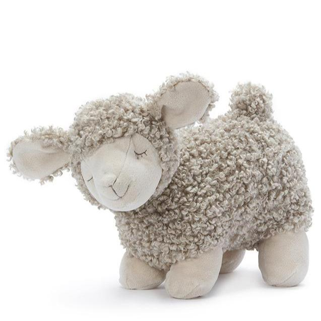 Charlotte the Sheep