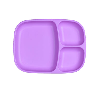 Divided Tray (Purple)