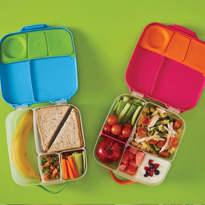 Bento Lunchbox (Ocean Breeze)