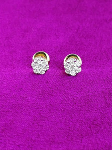 T124 14K Ladies Earring