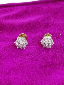 T297 14K Ladies Earring
