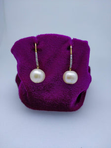 T387 14K Ladies Earring