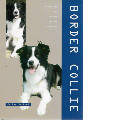 Border Collie | Esther Verhoef