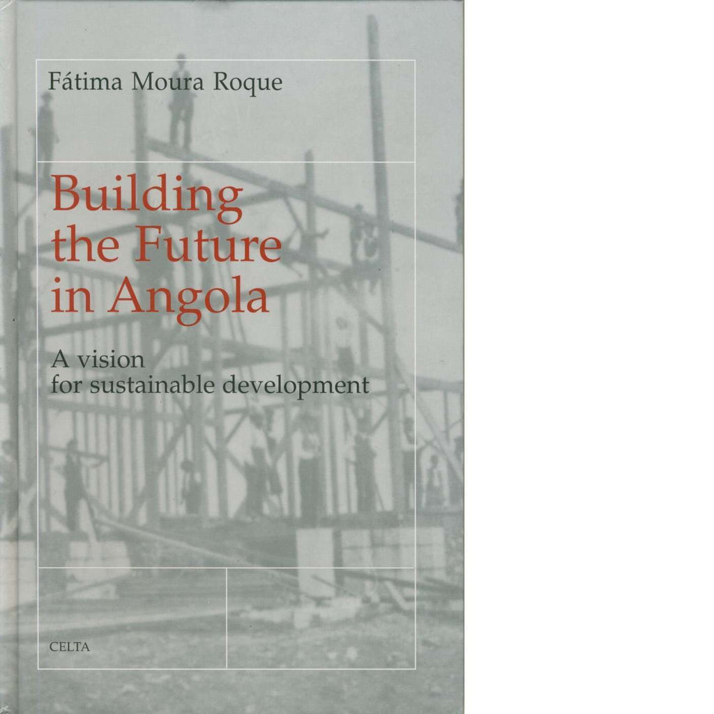 Bookdealers:Building the Future in Angola | Fatima Moura Roque