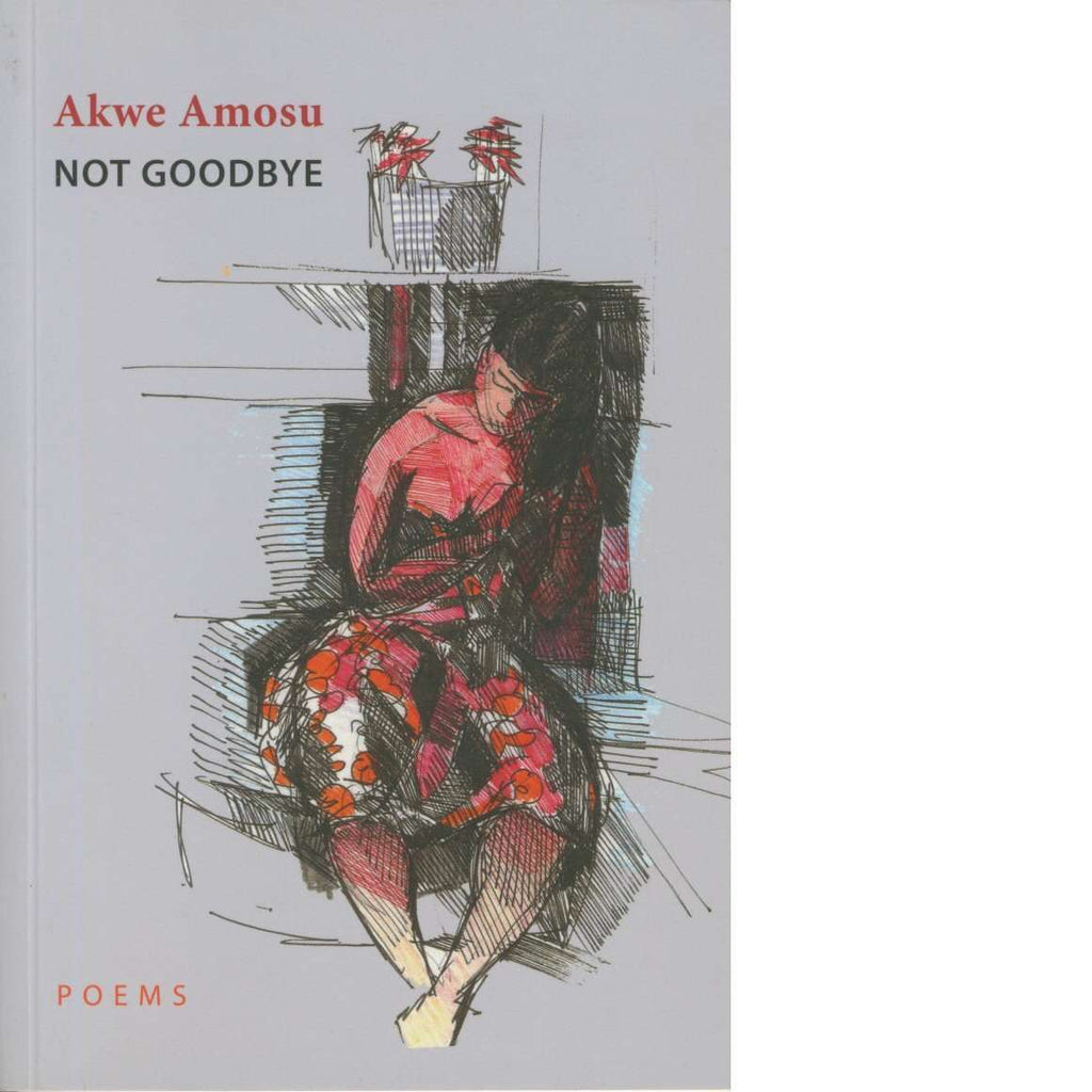 Not Goodbye: Poems by Akwe Amosu | Book | Poetry and Plays | Bookdealers