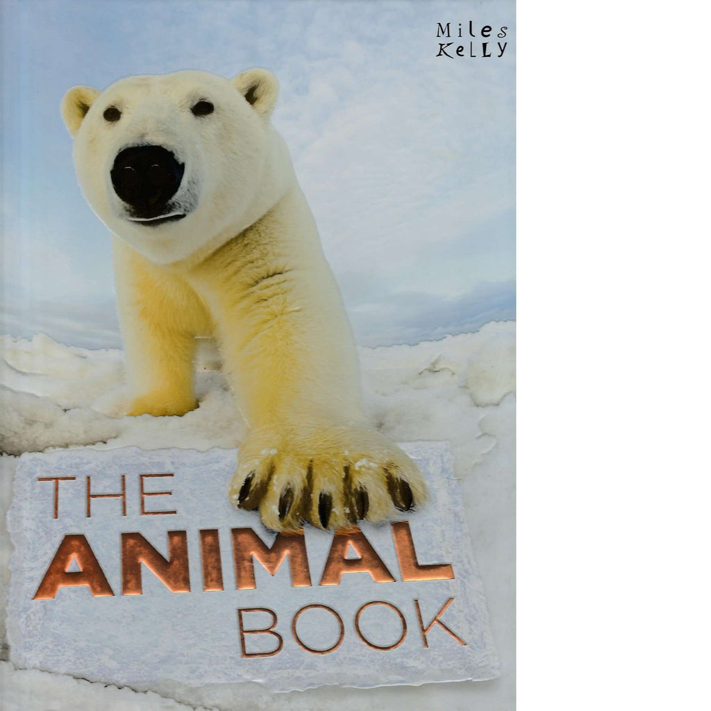 Bookdealers:The Animal Book | Miles Kelly